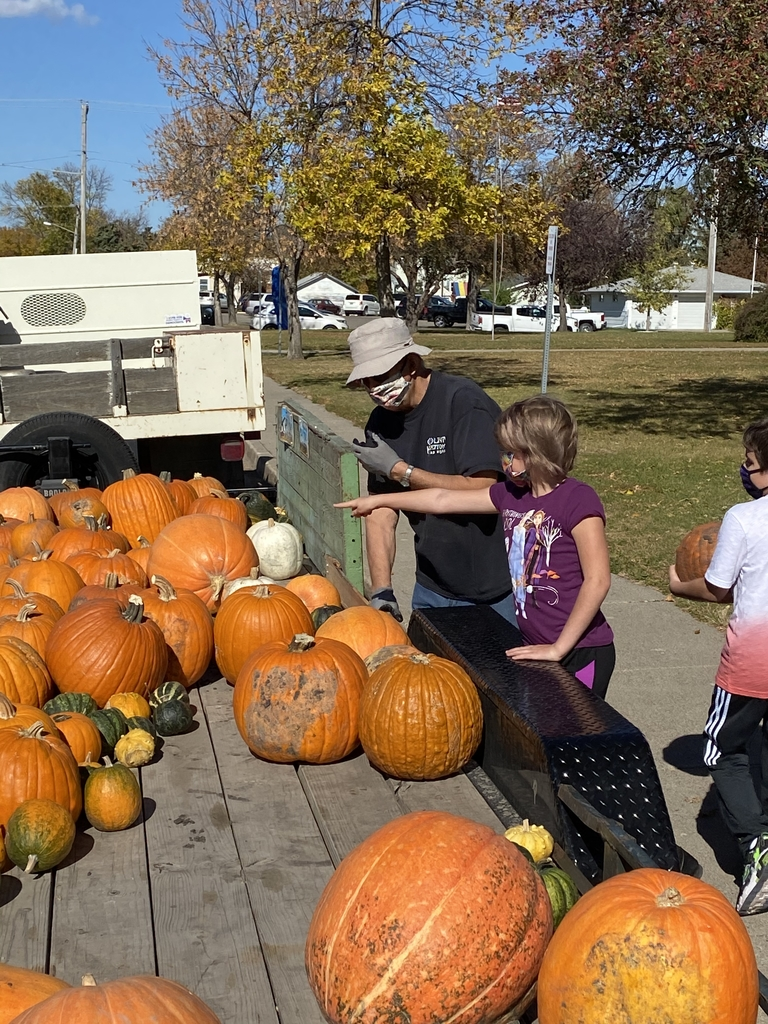 Picking the perfect pumpkin.